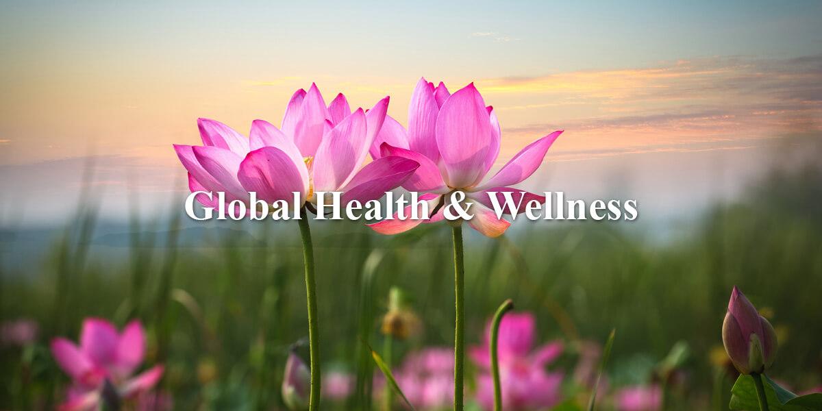 Global Health and Wellness